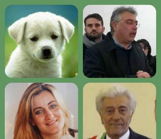 litoraledomizio.net-cellole-canile-compasso-sasso-russo