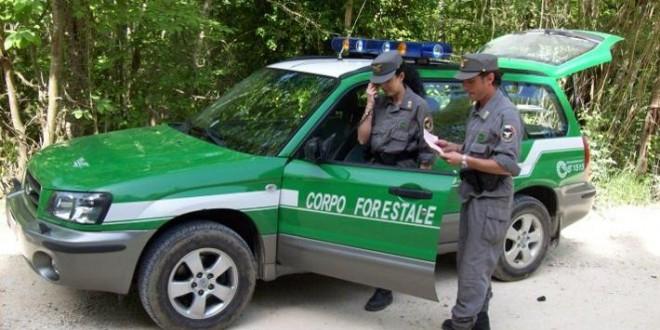 litoraledomizio.net-corpo-forestale-dello-stato